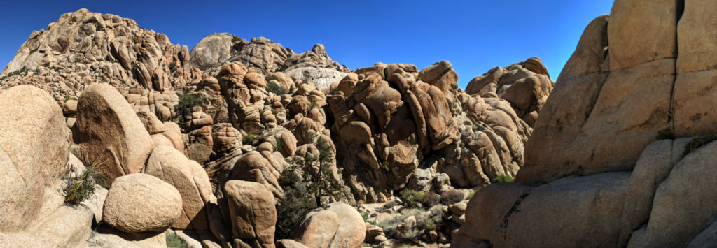 A panorama of rocks at Joshua Tree National Park