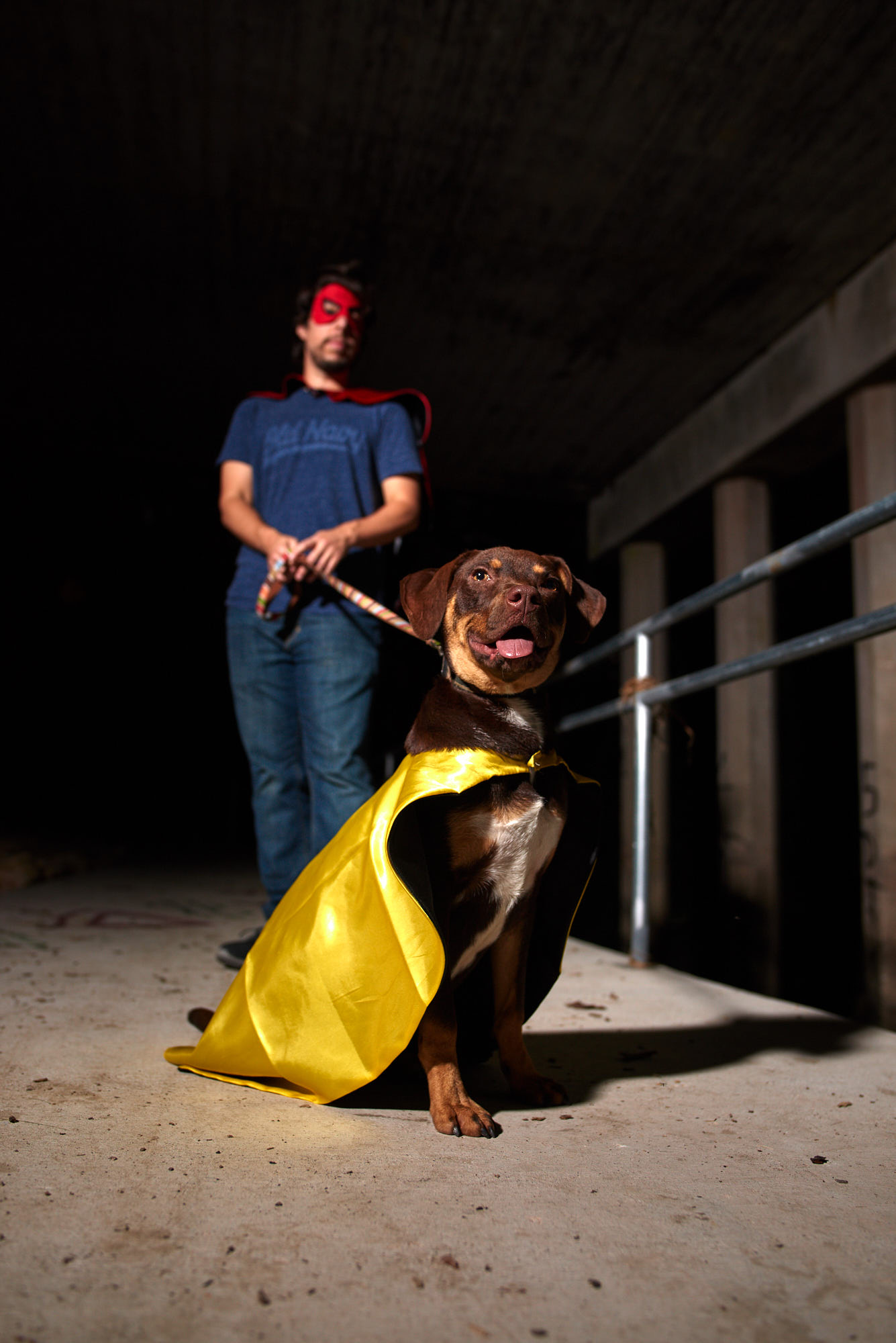 Zooma went super villan for this shoot, but he is really a nice cuddly dog. He posed perfectly for the photoshoot.