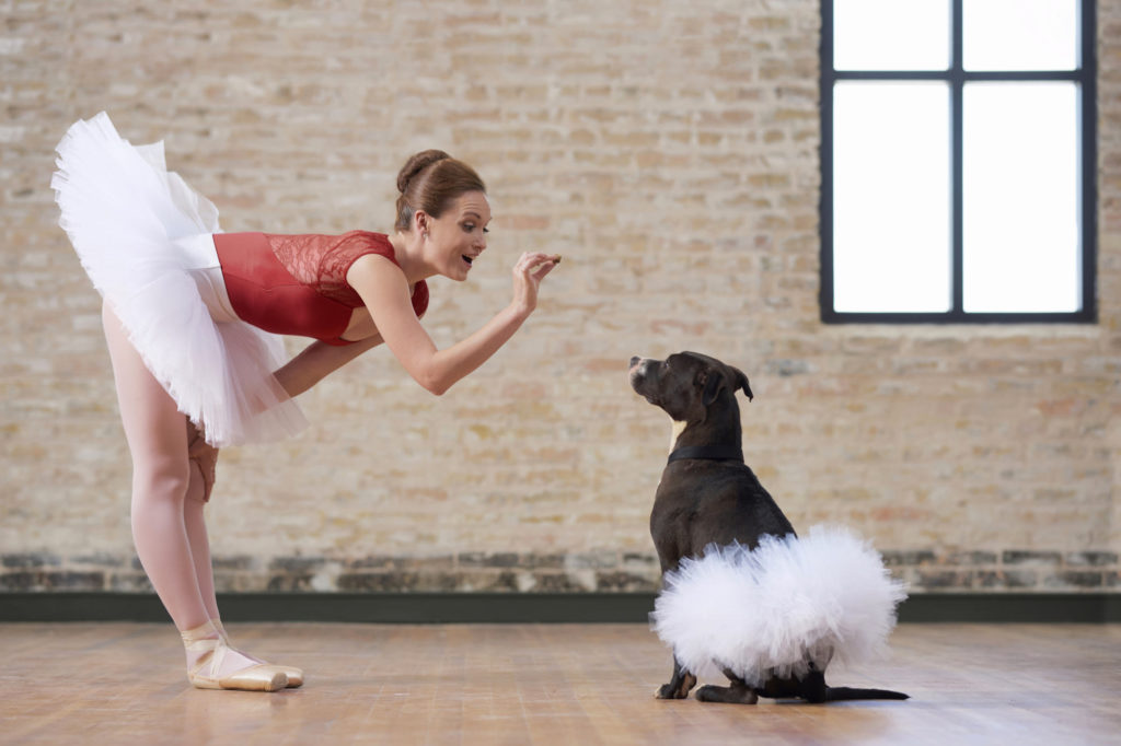 Ballerina and pit bull shoot for the Taylor animal shelter.